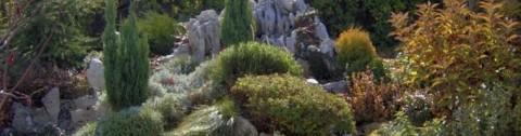 озеленяване на градини - скален кът