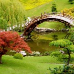landscape-design-plans-japanese-garden-randy-son-of-robert-designing