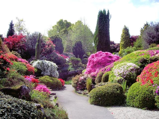landscape-design-plans-rock-flower-garden-margaret-anne-designing