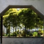 Прозорец към градина