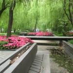 Пейки в парк