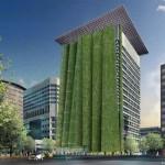 Вертикална озеленяване 2