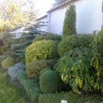 Резитби в градината