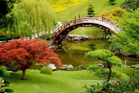 landscape-design-plans-japanese-garden-randy-son-of-robert-designing