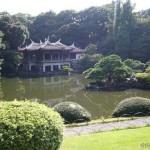 shinjuku_gyoen_national_garden-shinjuku_o4