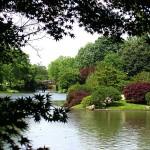 Ботовическа градина