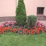 Поддръжка на градини
