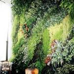Интерйорна вертикална градина