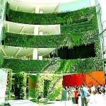Вертикално озеленяване 2