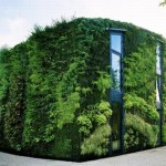 vertical-garden-workspace